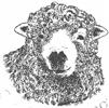 Greyface Dartmoor Logo